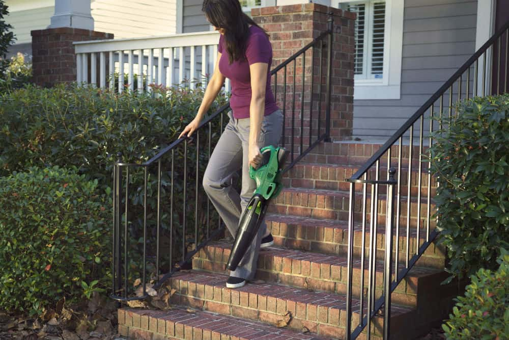 What are the best Weed Eater Blowers?