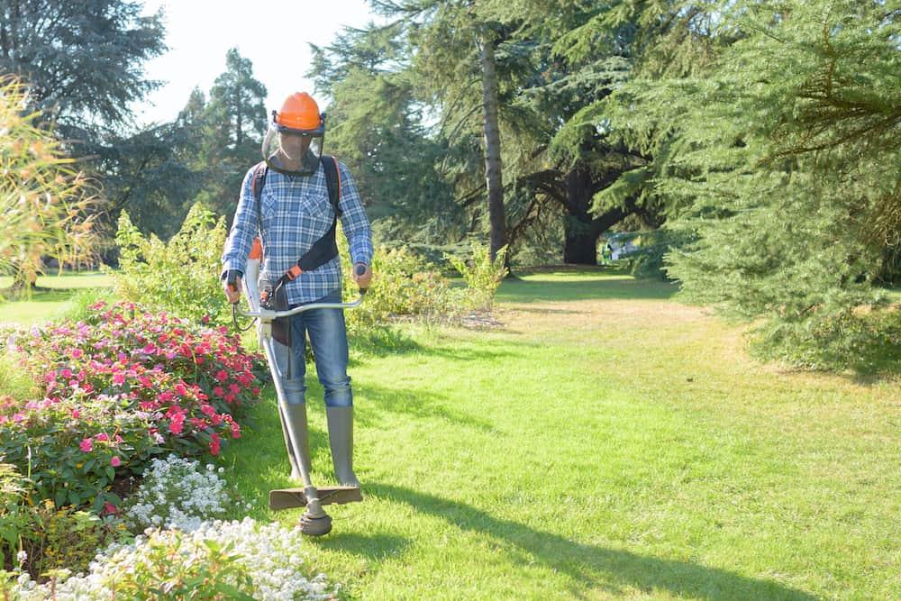 machines to cut grass